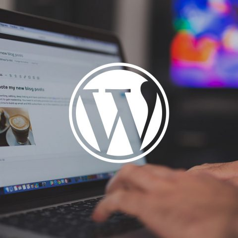 Wordpress logo, with person using laptop in background